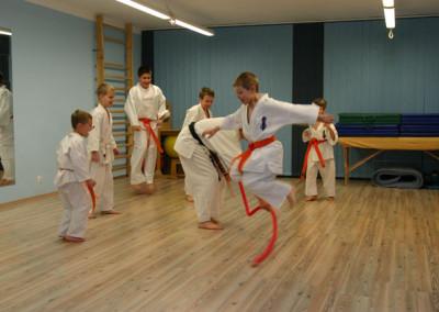 Zajęcia karate akademia ruchu bielany