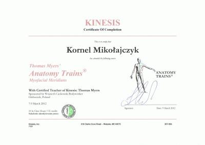 Kornel Mikołajczyk certyfikat KINESIS