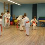 ćwiczenia karate na bielanach