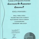 Certyfikat Kinga Podolska11