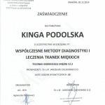 Certyfikat Kinga Podolska7