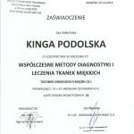 Certyfikat Kinga Podolska6